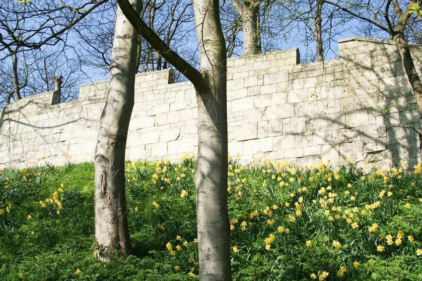 City Walls, York - Explora Escocia - Tours en español